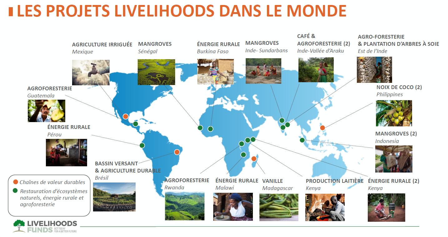 Carte monde, projets Livelihoods, COVID-19 information, soutien