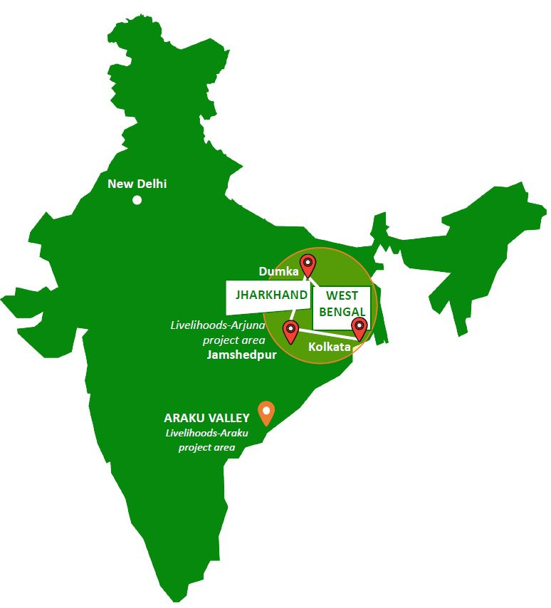 Livelihoods-Arjuna project area, India