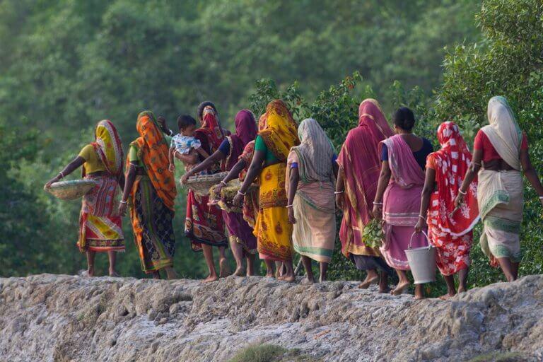 Mathurakand. Un groupe de femmes retourne au village après avoir ramassé des propagules de palétuviers.