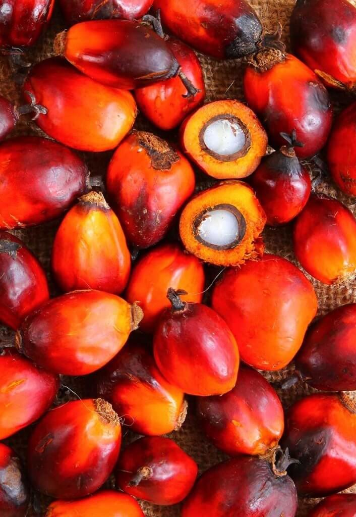 Palm fruit L3F Indonesia Livelihoods